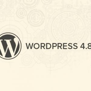 وردپرس نسخه ۴.۸ منتشر شد. امکانات و قابلیت ها را ببینید!