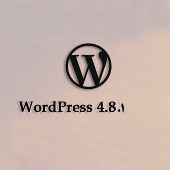 وردپرس نسخه 4.8.1 منتشر شد