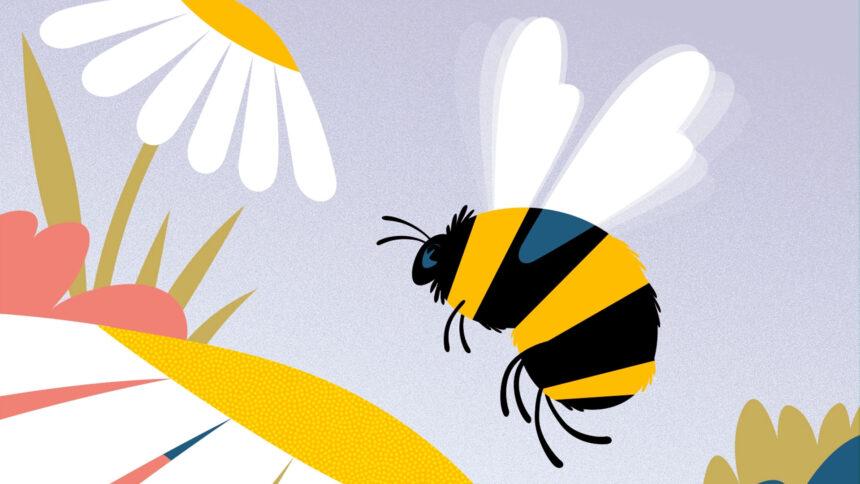 افزونه ضد هرزنامه وردپرس Antispam Bee