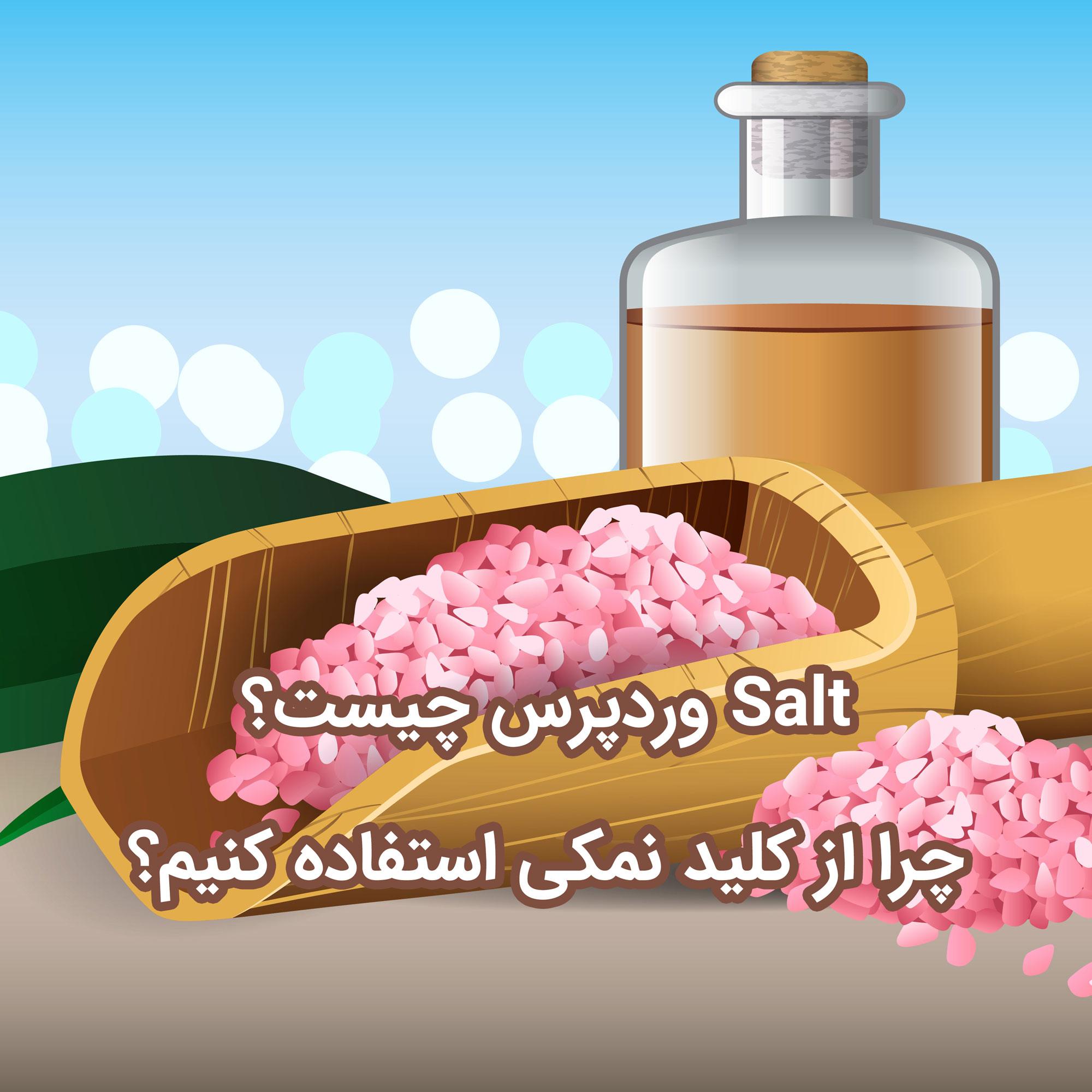 Salt وردپرس چیست؟ چرا از کلید نمک استفاده کنیم؟