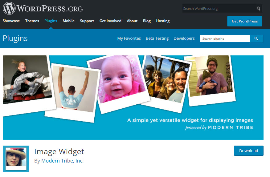 تنظیمات افزونه Image Widget