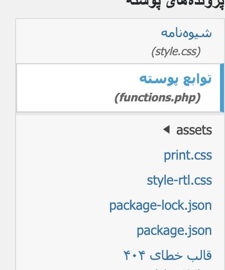 انتخاب فایل functions.php
